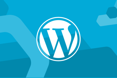 Large wordpress 3x